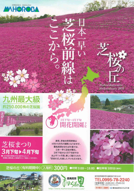 霧島高原まほろばの里 芝桜の丘